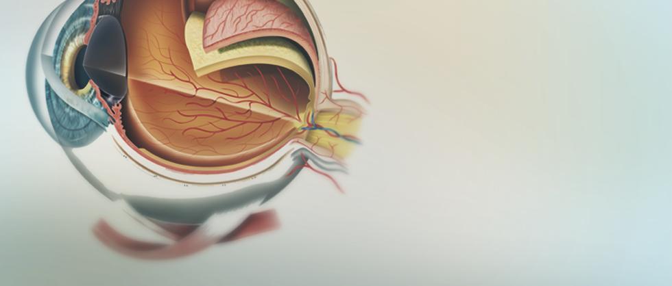 Измерение глазного давления прибор купить