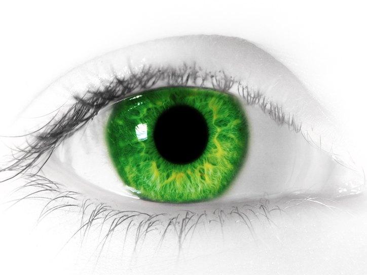 Зрачок глаза: описание, строение, функции